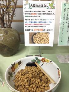 大豆のお話