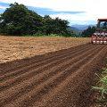 【龍氣農園より】蕎麦の種を蒔きました