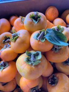 柿が今年も豊作でした!